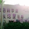ラベンダーの花畑詐欺:上海