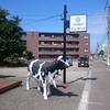 札幌散歩『福住方面と木下大サーカス』(2017年8月)
