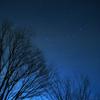 【無料/フリーBGM素材】夜の森、自然の声、星空『Night Forest』環境音楽