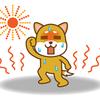 犬の熱中症対策できていますか?熱中症対策に必要なケアと対策グッズ