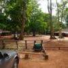 コーケー遺跡群のプラサットトムからジャングルを一望!カンボジアのシェムリアップにはアンコール遺跡群以外に見所は沢山ある!