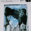 「瀧口修造の造形的実験」。2001.12.4~2002.1.27。渋谷区立松涛美術館。
