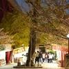 北九州市 若松区の「えびす祭り」春季大祭 福岡県北九州市若松区浜町