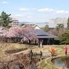 ニャーナラトー師の「京都リトリート」1日目、終了しました