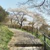 【遊】錦着山公園でお花見@栃木市
