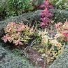 日時計花壇のリニューアル