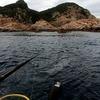足摺岬で釣りしたなら、是非寄っていただきたい隠れた絶景スポット