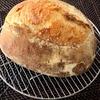 こなログ ツナオリーブソースとパン
