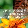 はじめてのマクロレンズの世界!EF100mm F2.8L macro IS USMレビュー!