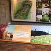 神戸布引ハーブ園へ行きました!