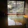 群馬県南牧村「星尾温泉木の葉石の湯」を訪ねてきました(今日は小さな旅のご紹介です)