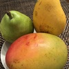 夏の果物🥭🍐