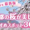 【2021年最新版】京都の桜が美しいおすすめスポット30選
