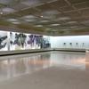 内田あぐり+鳥取県立博物館コレクション