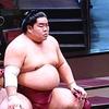 大栄翔、役力士総ナメで7連勝!