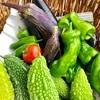 収穫祭とポン酢