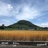 【ラン練習】香川と東京の二部練