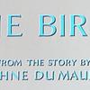 負け犬の映像マジックの世紀末的エンサイクロペディア「鳥」