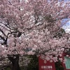 【感想】国立劇場に3月歌舞伎公演を観に行きました