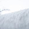 雪の色と雪の粒