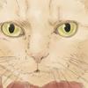 【イラスト】猫:ポン子ちゃん【似顔絵】