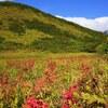 紅葉はじめの唐松岳へ。