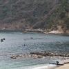 冬の日本海合宿〜荒れた海を漕ぐために〜