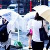 雨の降った木曜日