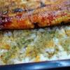 【印旛】印旛沼漁業直営レストラン 新鮮うな重は美味しい♪【ランチ】