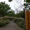 初夏の道東たび3日目〜知床五湖散策(大ループ)その1
