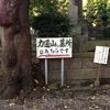 力道山のお墓は、プー丸の散歩コース!