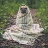 【HSPの日常】グッと寒くなって、心までキュッと縮こまる季節です!自分に優しくいきましょう!