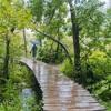 大雨のプリトヴィツェ湖群国立公園*