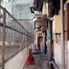 【今週のラーメン1486】 新橋 纏 (東京・新橋) 烏賊干し鶏白湯醤油そば