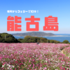 福岡からフェリーで10分!コスモスが満開の能古島でのんびり一人旅!