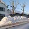 【北海道の冬の寒さ】マイナス10℃の世界