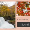秋の東北旅① 紅葉の奥入瀬渓流 まるで絵画の世界へ