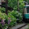 JRの『鎌倉・江ノ島パス』を買っておけば観光には間違いない。江ノ電も乗れるよ!