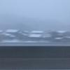 雪の中、東京へ
