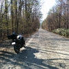 2015年4月29日 万沢林道の話