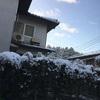 ちょっとだけ積もってた雪。