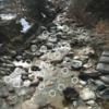 毛鉤を打ち込む渓流のポイントと流し方:テンカラキャスティング実践