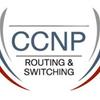 2回目でCCNP ROUTEに合格 | Ping-t以外にも対策が必要