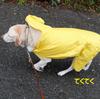 「赤い傘の女」と「黄色いカッパの犬」