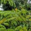 「ゴールデンウィーク、観光地で雨だよ・・・」 雨が降ったら行くべきスポット in 館山 Part 1
