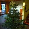 ☆今年のクリスマス、無事終了!
