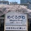 どこでもGO 東京・目黒川沿いの桜のお花見 桜まつり中止、ライトアップ中止だが、密なく静かに楽しめる! 周辺スポットも紹介