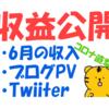 6月最終日!今月の副業収入・ブログPV数・Twitterインプレッション等を大公開!