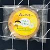 〈139〉森のクッキー ハニーレモン