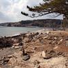 《11.3.11》2016夏の巡礼-3日目-牡鹿・十八成浜/新しい住宅地は背後の山をのぼった